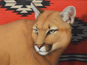 Palmore-Mountain-Lion