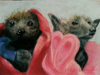 Two Bats in a Blanket